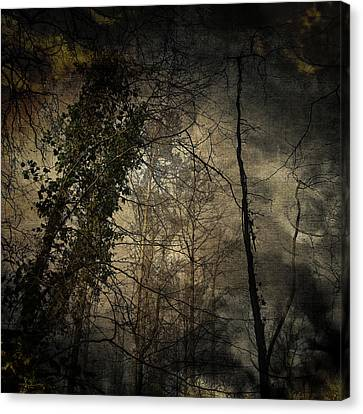 Canvas Print featuring the digital art Trees 4 by Andy Walsh