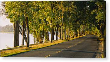 Lake Washington Canvas Print - Trees Along A Road, Lake Washington by Panoramic Images