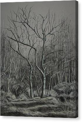 Trees Along The Greenway Canvas Print by Janet Felts
