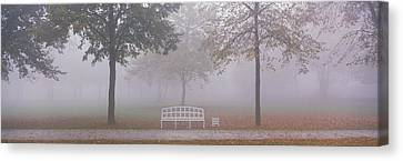Trees And Bench In Fog Schleissheim Canvas Print by Panoramic Images