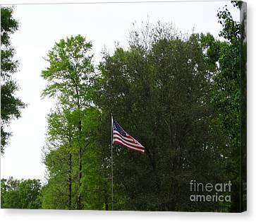 Trees And Flag Canvas Print by Joseph Baril
