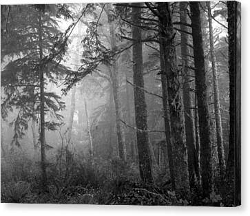 Canvas Print featuring the photograph Trees And Fog by Tarey Potter