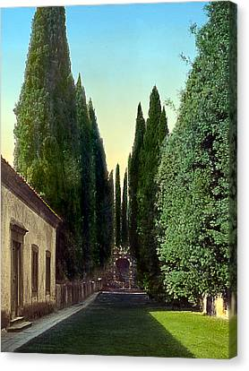 Trees And Grotto Canvas Print