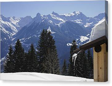Trees And Mountains In Winter Canvas Print by Matthias Hauser