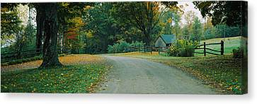 Trees At A Roadside, Vermont, Usa Canvas Print by Panoramic Images