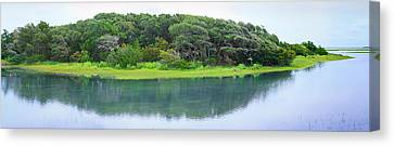 Trees At Rachel Carson Coastal Nature Canvas Print by Panoramic Images