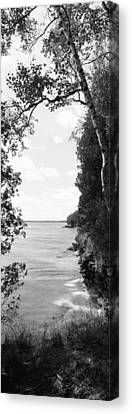 Trees At The Lakeside, Cave Point Canvas Print by Panoramic Images