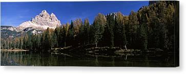 Trees At The Lakeside, Lake Misurina Canvas Print