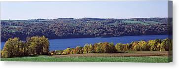 Trees At The Lakeside, Owasco Lake Canvas Print