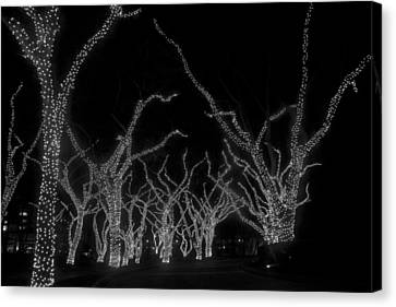 Canvas Print featuring the photograph Trees Bejeweled by Jim Snyder