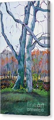 Sister Trees Canvas Print by Janet Felts