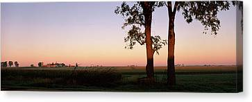 Trees In A Farm At Dusk, Ogle County Canvas Print by Panoramic Images