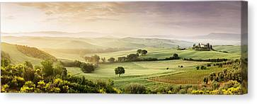 Trees In A Field, Villa Belvedere, San Canvas Print by Panoramic Images
