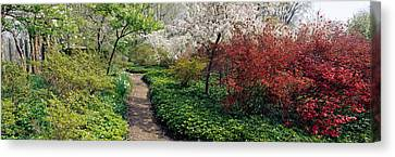 Garden Scene Canvas Print - Trees In A Garden, Garden Of Eden by Panoramic Images