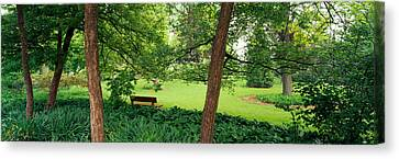 Trees In A Park, Adams Park, Wheaton Canvas Print by Panoramic Images