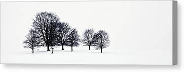 Trees In A Snowy Field In Chatsworth Canvas Print by John Doornkamp