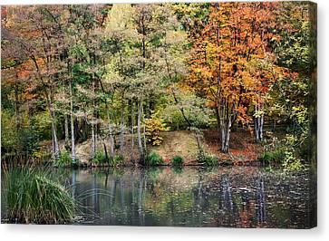 Trees In Autumn Canvas Print by Natalie Kinnear