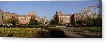 Trees In The Lawn Of A University Canvas Print by Panoramic Images