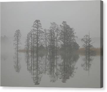 Mist Canvas Print - Trees In The Mist  by Claude McCoy