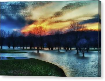 Indiana Landscapes Canvas Print - Trees In Water On Flooded Golf Course by Rona Schwarz