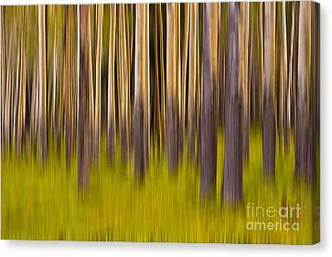 Canvas Print featuring the digital art Trees by Jerry Fornarotto