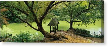 Trees Near A Pond, Central Park Canvas Print