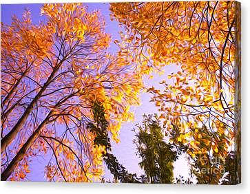 Trees Canvas Print by Nur Roy