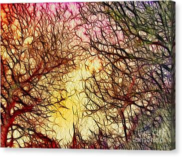 Trees Of The Four Seasons Canvas Print by Kaye Menner