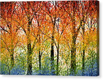 Trees Of The Rainbow Canvas Print by Amy Giacomelli