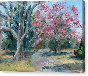 Carnton Plantation Canvas Print - Trees Of Windermere by Susan Elizabeth Jones