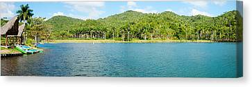 Trees On A Hill, Las Terrazas, Pinar Canvas Print by Panoramic Images