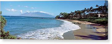 Trees On The Beach, Molokai, Maui Canvas Print by Panoramic Images