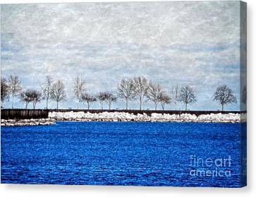 Trees On The Edge Canvas Print by Mary Machare