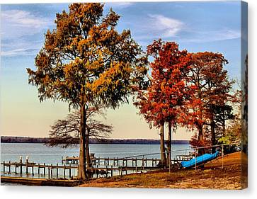 Trees On The Riverbank Canvas Print by Carolyn Ricks