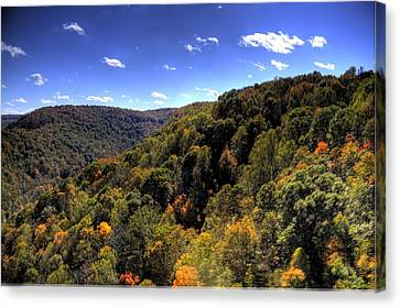 Trees Over Rolling Hills Canvas Print