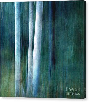 The Woods Are Lovely Dark And Deep Canvas Print by Priska Wettstein