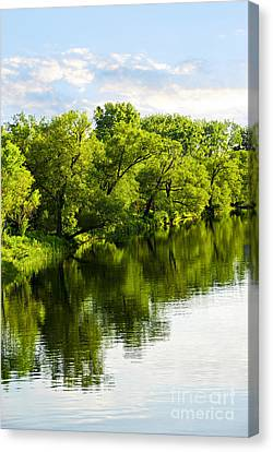 Trees Reflecting In River Canvas Print by Elena Elisseeva