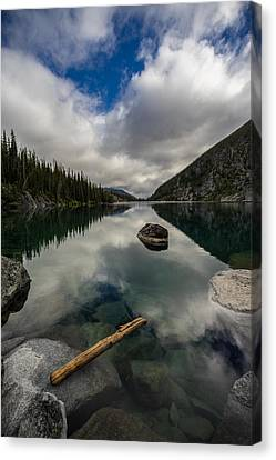 Trees Rocks Wood And Water Canvas Print by Mike Reid