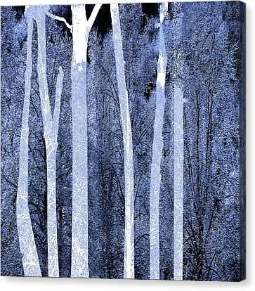 Trees Square Canvas Print by Tony Rubino
