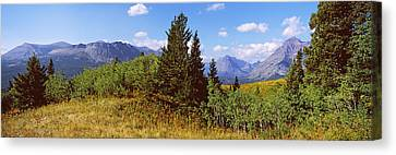 Trees With Mountains In The Background Canvas Print
