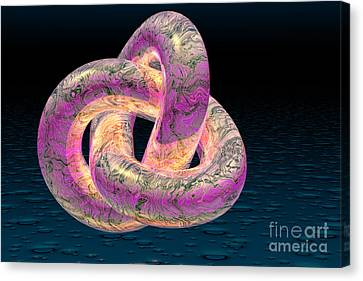 Trefoil Knot Canvas Print by Carol and Mike Werner