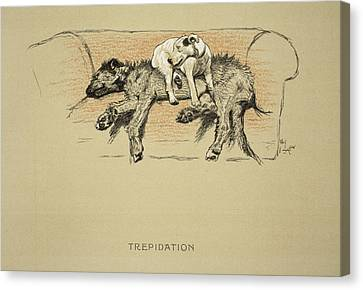Puppies Canvas Print - Trepidation, 1930, 1st Edition by Cecil Charles Windsor Aldin