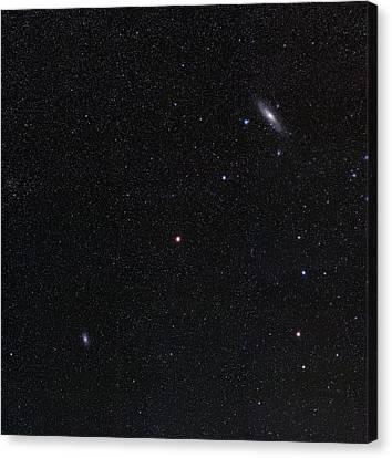 Triangulum And Andromeda Galaxies Canvas Print by Eckhard Slawik