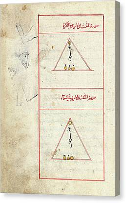 Triangulum Constellation Canvas Print by Library Of Congress
