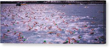 Ironman Canvas Print - Triathlon Athletes Swimming In Water by Panoramic Images