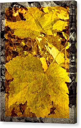 Tribute To Autumn Canvas Print by Jordan Blackstone