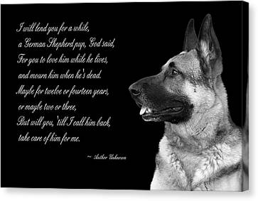 Tribute To German Shepard Canvas Print by Cecil Fuselier