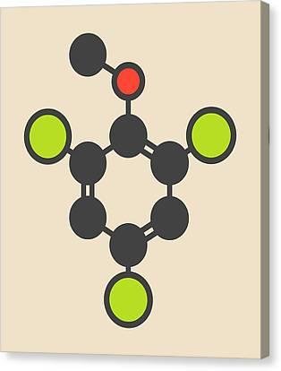 Trichloroanisole Cork Taint Molecule Canvas Print by Molekuul