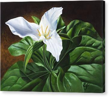 Trillium - Oil Painting On Canvas Canvas Print