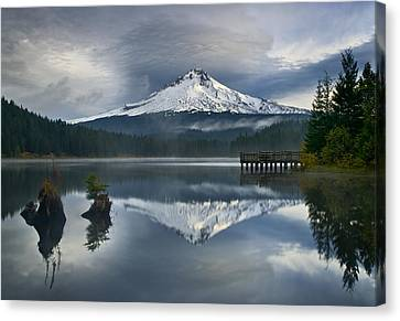 Trillium Reflections Canvas Print by David  Forster